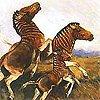 3quagga-extinction