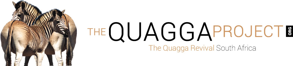 The Quagga Project explained