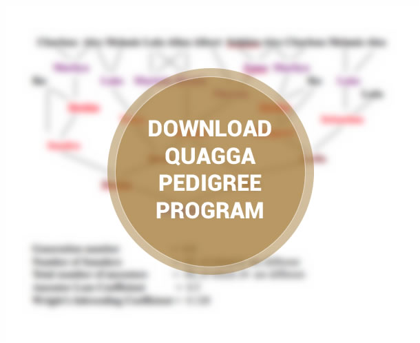 Quagga Pedigree program